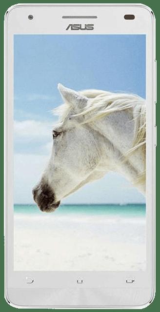 Asus  Pegasus